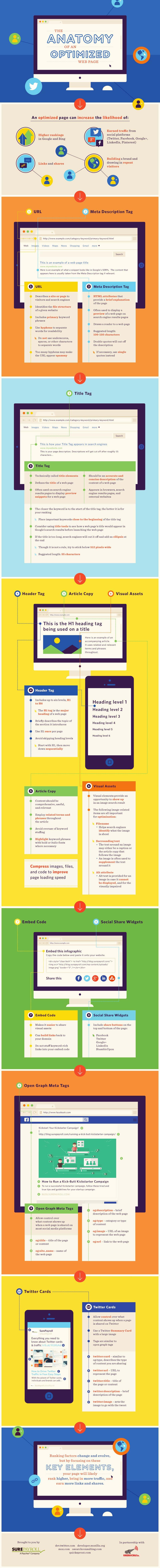 On Page Optimization Infographics